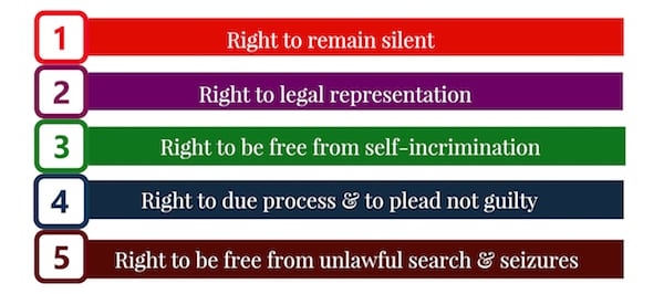 Constitutional Rights Infograph